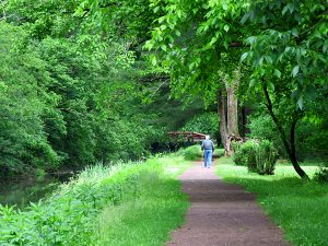 Person walking on the canal path