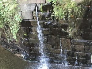 Leaking stone walls at the Tinicum Aqueduct